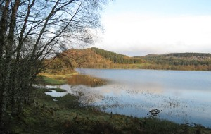 Loch Ruthven  - a beautiful and tranquil reserve near Loch Ness