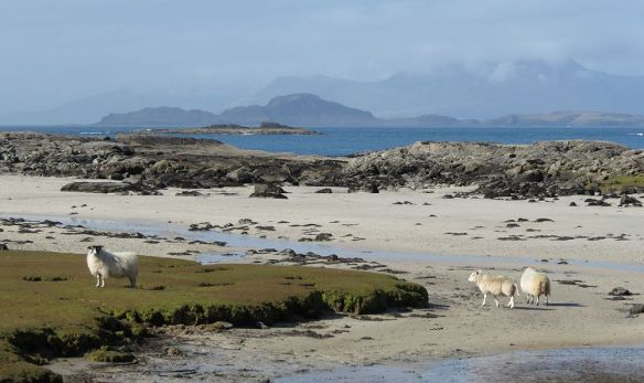View from Partauirk towards Muck and Skye.