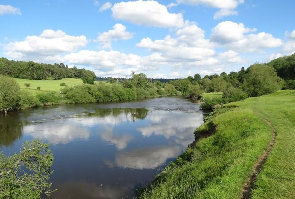 River Severn near Arley