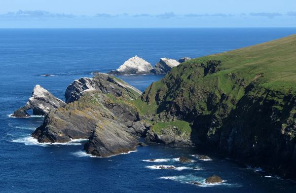 Hermaness coast, looking north. The rocks are white because they are covered in gannets...