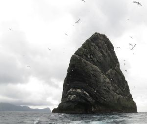 Stac Less, the highest stack in the archipelago