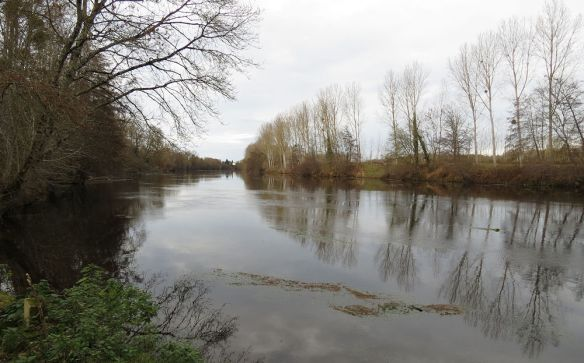 The river Vienne near Ardentes