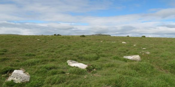Stone circle on Craddock Moor