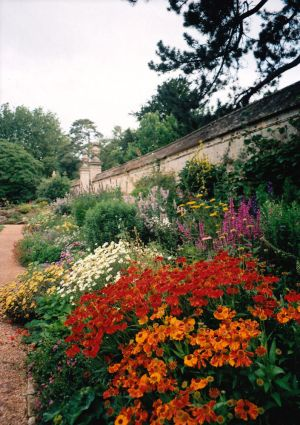 Rosalie was inspired by the botanic gardens in Oxford and took many photos there.